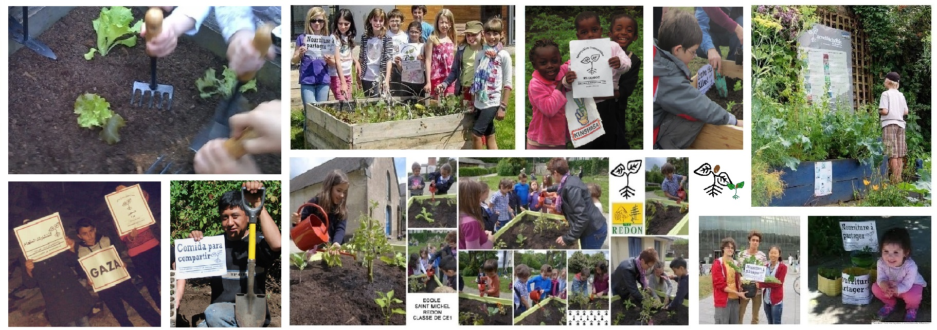 Partout en France et dans le monde, des enfants participent aux Incroyables Comestibles...